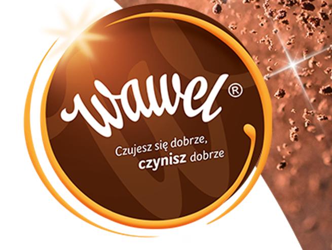 wawel-logoczyniszdobrze655